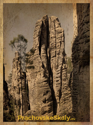 Prachovské skály - skalní věž Modlitba skal